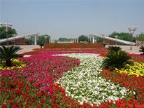 奥林匹克雕塑园